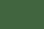 зеленый фото фото фото