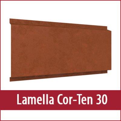 Lamella Cor Ten 30 фото фото фото